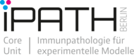 iPath.Berlin: Logo